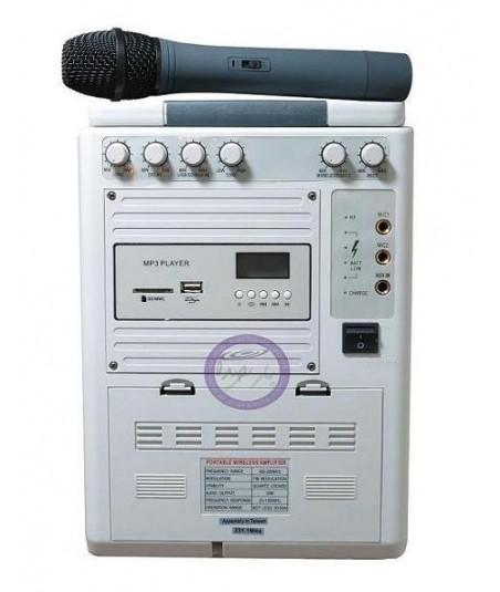 بلندگو پرتابل AAP PRO مدل 100B